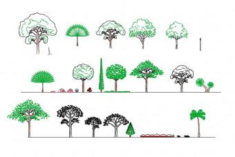 دانلود پروژه آماده اتوکد طرح دو بعدی مجموعه درخت