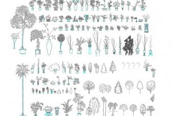دانلود پروژه آماده اتوکد طرح دو بعدی مجموعه گیاهان خانگی