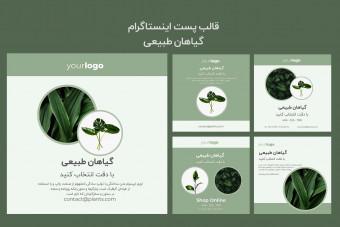 مجموعه پست لایه باز اینستاگرام گیاهان طبیعی